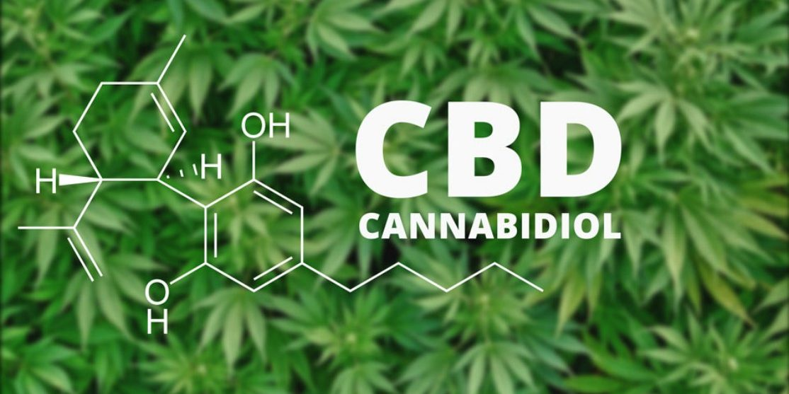 what-is-cbd-cannabidiol-1
