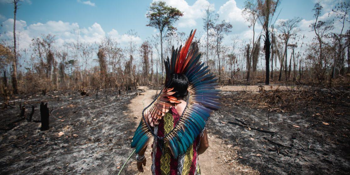 amazzonia zibechi