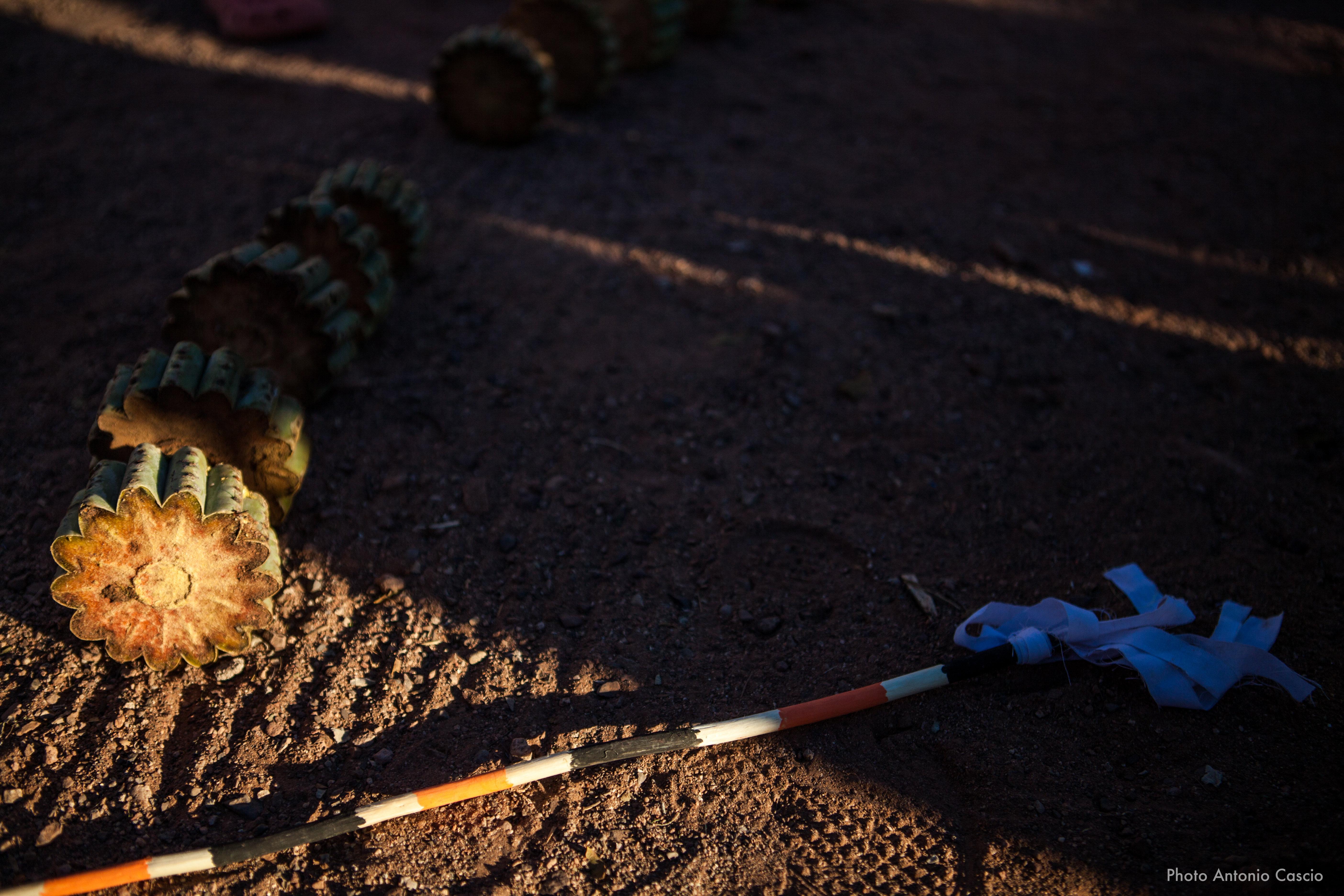 Un pezzo di cactus tagliato per disegnare un circolo di gioco durante la festa della pubertà. Punta Chueca, Sonora, Mexico. 10/12/19