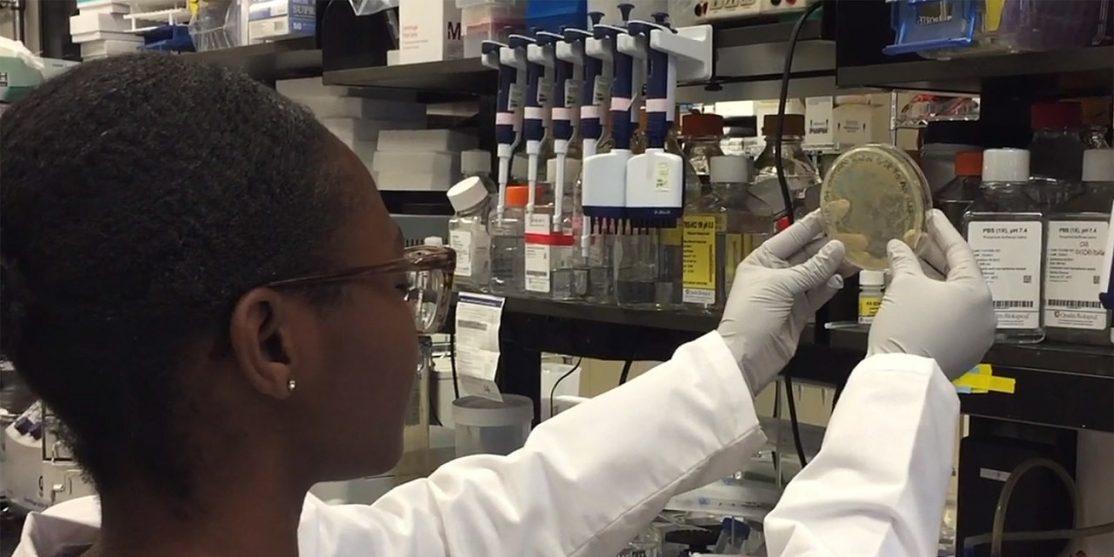 1280px-Scientist_examines_COVID-19_vaccine_agar_plate